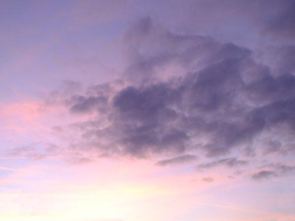 pastel dawn sky